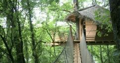 Dormir dans une cabane perchée dans les arbres