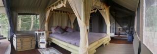 Tente safari intérieur vue panoramique