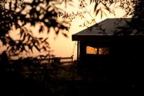 Extérieur tente à l'aube au glamping Un lit au Pré à La Ferme de la Moricière à Sartilly en Basse-Normandie