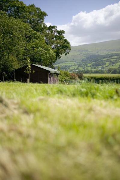 Tente dans les champs au glamping Un lit au Pré à La Ferme du Moncel à Fay en Basse-Normandie