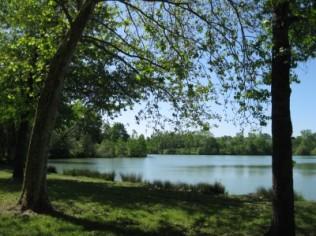 Lac de Lamontjoie au glamping Camping Saint-Louis à Lamontjoie en Aquitaine