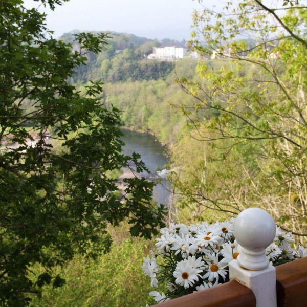 Vue depuis le Pigeonnier à 9 mètres au glamping Les Nids d'Hôtes à Cambo-les-Bains en Aquitaine
